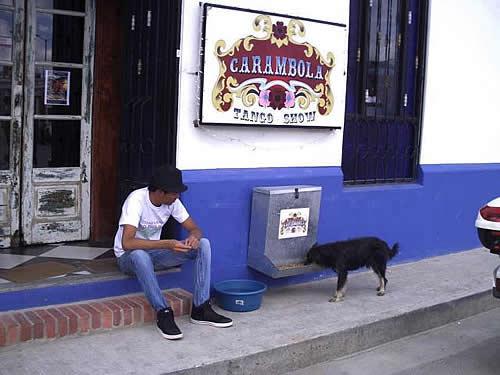Restaurante colombiano disponibiliza comedouro para cães de rua.
